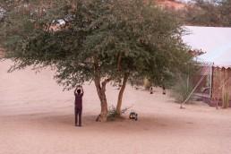 Samsara Desert Camp, India - Between Beds